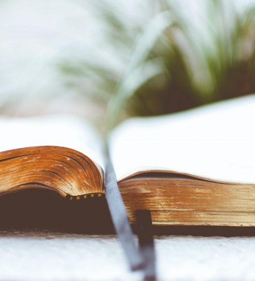 Ensinando a Palavra de Deus